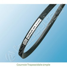 Courroie Trapezoidale simple
